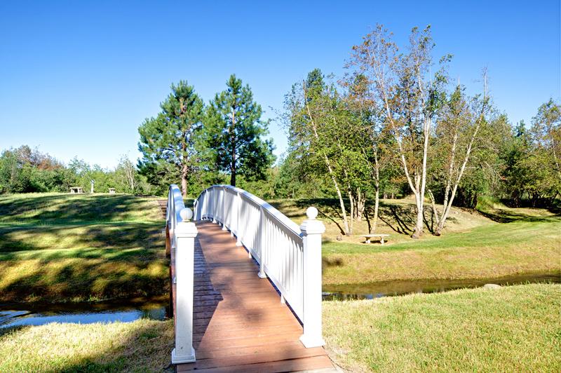 031_Walking Bridge